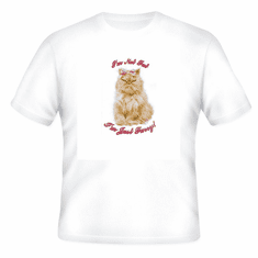 Animal Nature kitten kitty cat I'm not fat I'm just furry shirt t-shirt