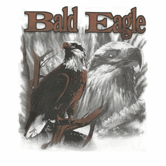Animal Nature wild Bald Eagle shirt t-shirt