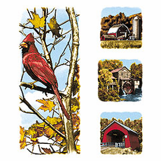 Animal nature wild cardinal old barn scenic covered bridge tshirt shirt
