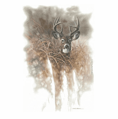 Animal Nature wild deer buck t-shirt shirt