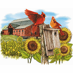 Animal nature wild red bird cardinal big red barn sunflowers tshirt shirt