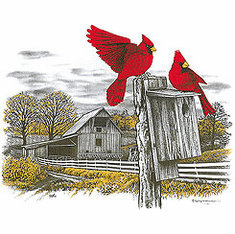 Animal nature wild red bird cardinal rustic barn tshirt shirt