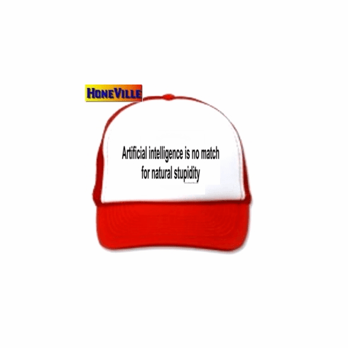 Artificial intelligence is no match for natural stupidity HAT ball cap