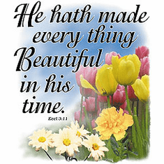 Christian Shirt:  He hath made everything beautiful in his time