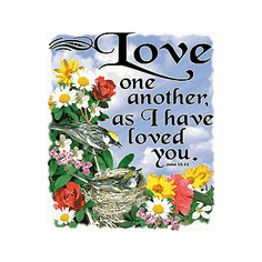 christian shirt:  LOVE one another as I have loved you