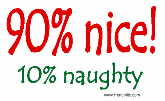 Christmas Shirt 90% Nice 10% naughty