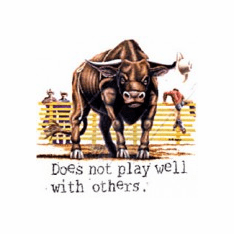 Country and Western Rodeo Bull Does not play well with others t-shirt shirt