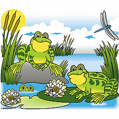 Country Decorative frog lily pad pond scene tshirt shirt