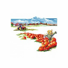 Country Decorative pumpkins farm tractor scare crow scarecrow tshirt shirt