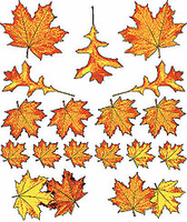 country decorative shirt fall autumn leaves leaf
