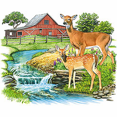 country decorative shirt farm scene barn creek deer doe wildlife