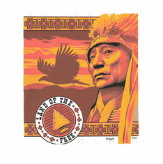 Country Western Land of the free Native American Indian t-shirt shirt