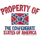 dixie shirt Property of the Confederate states of America flag southern