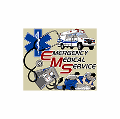 EMS Emergency Medical Service EMT Paramedic shirt sayings