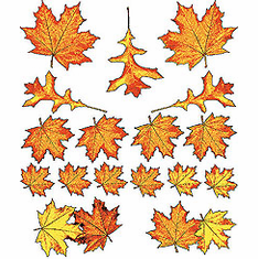 Fall autumn harvest leaves country decorative nature shirt