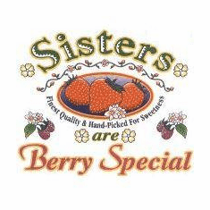 Family Sister Sisters are Berry special tshirt shirt