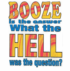 funny novelty shirt BOOZE is the answer what the hell was the question beer drinking party