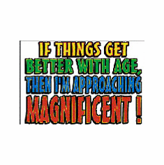 funny novelty shirt if things better with age I'm MAGNIFICENT