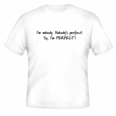 Funny one-liner t-shirt sayings shirt I'm nobody Nobody's perfect so I'm perfect