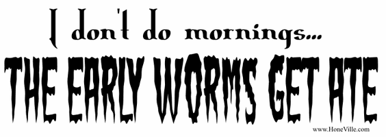 I don't do mornings... The early worms get ate!