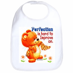 Infant baby bib Perfection is hard to improve teddy bear
