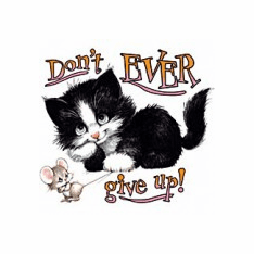 Infant baby toddler kids Don't ever give up kitty cat kitten