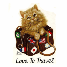 Infant baby toddler kids kitten kitty cat in a bag Love to travel