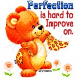 Infant baby toddler kids Perfection is hard to improve teddy bear