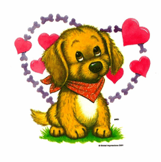 Infant baby toddler kids puppy dog doggy hearts