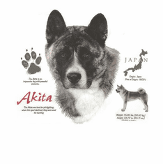 Nature Animal Dog doggy puppy Akita shirt t-shirt