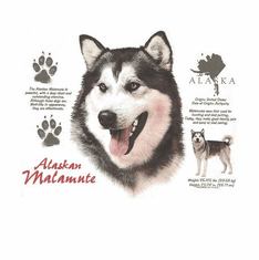Nature Animal Dog doggy puppy Alaskan malamnte shirt t-shirt