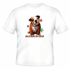 Nature Animal Dog doggy puppy Am I cute or what pit bull shirt t-shirt