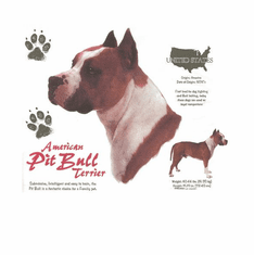 Nature Animal Dog doggy puppy American pit bull shirt t-shirt