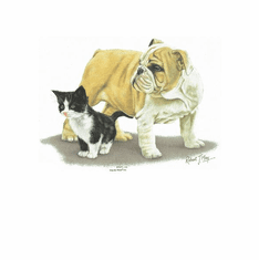 Nature Animal dog doggy puppy bulldog kitten kitty cat shirt t-shirt