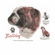 Nature Animal Dog doggy puppy Bulldog shirt t-shirt