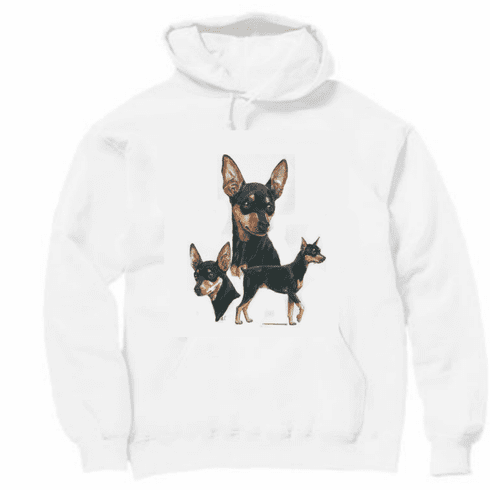 Nature Animal Dog doggy puppy dog breed pullover hoodie hooded sweatshirt