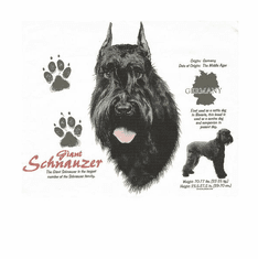 Nature Animal Dog doggy puppy giant schnauzer shirt t-shirt