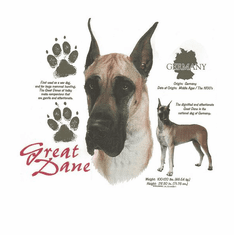 Nature Animal Dog doggy puppy great dane shirt t-shirt