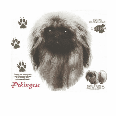 Nature Animal Dog doggy puppy Pekingese shirt t-shirt