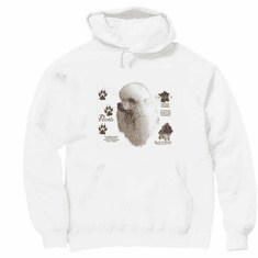 Nature Animal Dog doggy puppy poodle pullover hoodie hooded sweatshirt