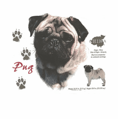 Nature Animal Dog doggy puppy pug shirt t-shirt