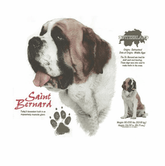 Nature Animal Dog doggy puppy saint bernard shirt t-shirt