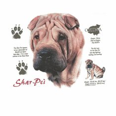 Nature Animal Dog doggy puppy shar pei shirt t-shirt