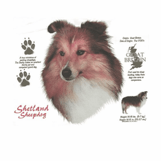 Nature Animal Dog doggy puppy shetland sheepdog shirt t-shirt