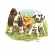 Nature Animal Dog doggy puppy three 3 puppies shirt t-shirt