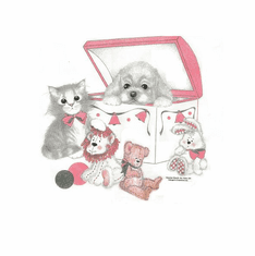 Nature Animal Dog puppy doggy kitten kitty cat toy box shirt t-shirt