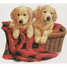Nature Animal dog puppy doggy puppies in a basket shirt t-shirt