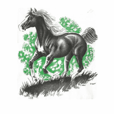 Nature Animal farm horse shirt t-shirt