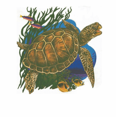 Nature Animal sea turtle shirt t-shirt