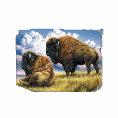 Nature Animal wild Buffalo shirt t-shirt
